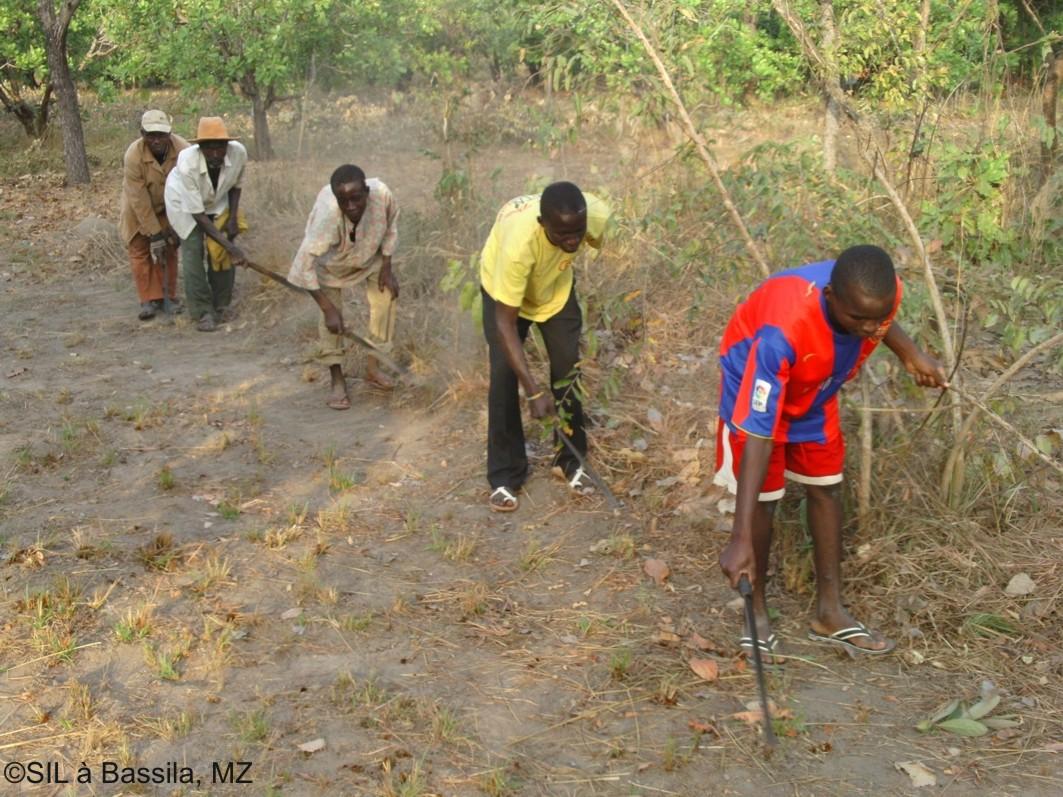 Landwirte schlagen in Gemeinschaftsarbeit die Feuerschneise