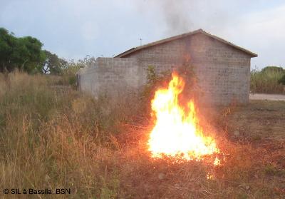 Beim Nachbarn steigen Rauch und Ascheflocken auf