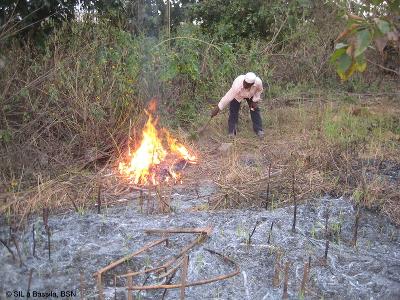 Feuerschneise brennen unter Aufsicht