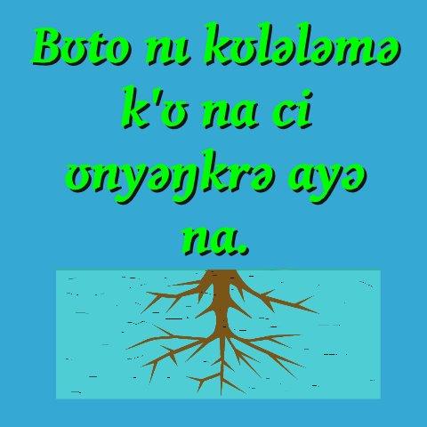 Apɛmpɛŋɛka : IBRAHIM INUUSA Malookiya